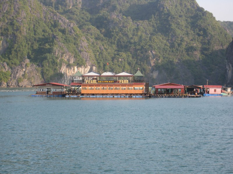 2015-01-13 Baie d'Ha Long 078