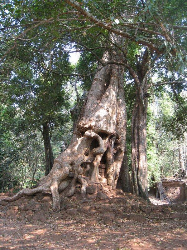 2015-03-03 Angkor Wat 051