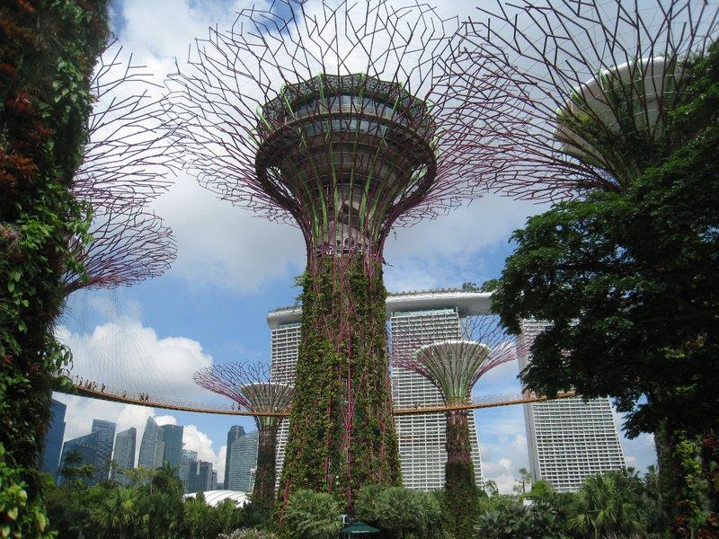 2015-03-10 Singapour 056