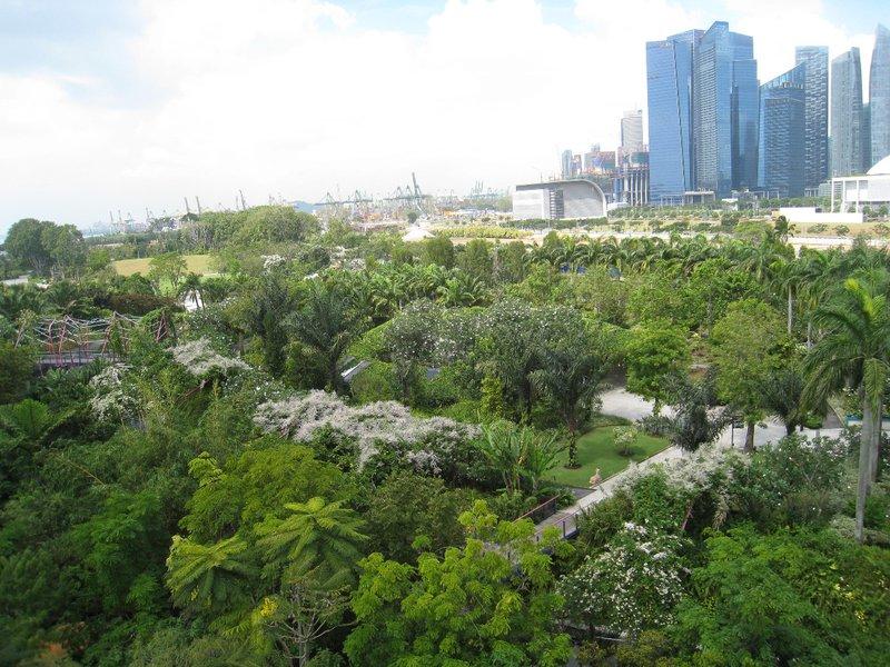 2015-03-10 Singapour 062