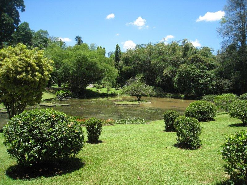 2015-04-14 Kandy - Peradeniya botanical garden 021