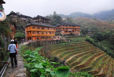 Tiantouzhai Village, Rice Terraces