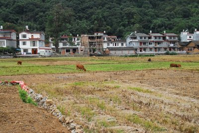 Dashizhai Village, Yulong River