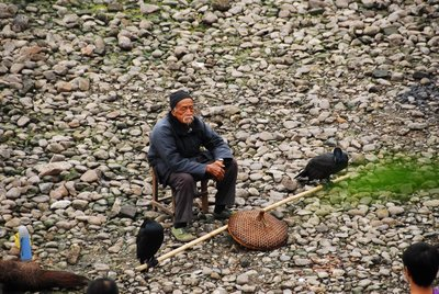 Man and his cormorants, Yangshuo