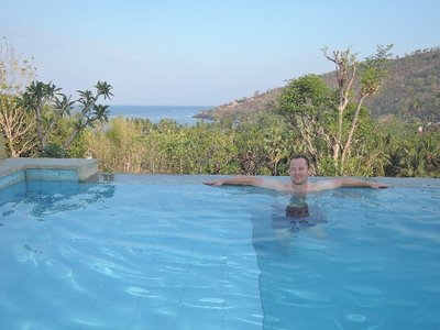 Our infinity pool with a view