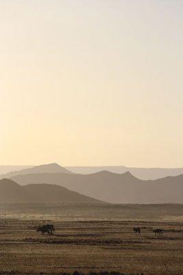 Desert21.jpg