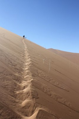 Desert28.jpg