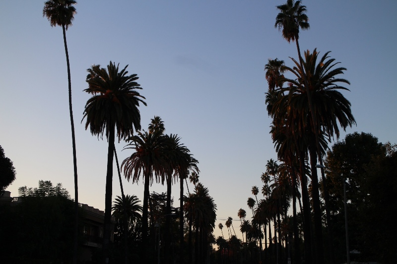 Beverly hills classic