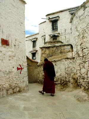 the monk of Zhebang Temple, in Tibet