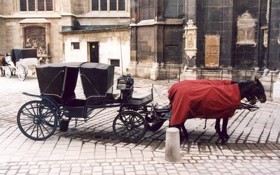 Fiaker or Horse Carriage by Stephansdom in Vienna