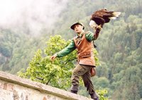 Falconer with bald eagle at Hohenwerfen Fortress, Austria