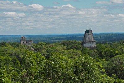 Tikal_4.jpg