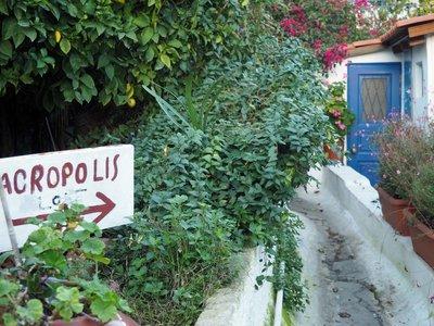 acropolis_path_2.jpg