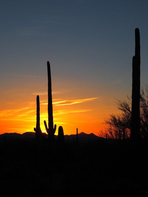 large_sunset_tucson.jpg