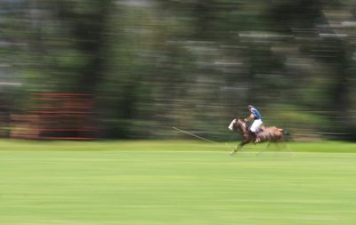 polo_ball_..t_in_motion.jpg