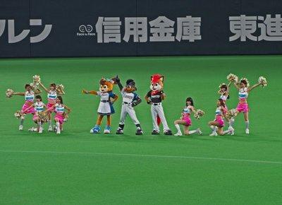 sapporo_baseball_7.jpg