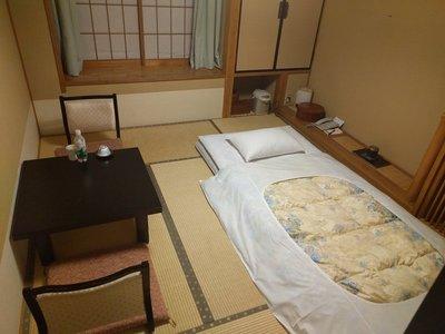 wakata_1.jpg