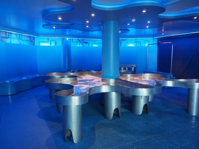 water_museum_bubble_room.jpg