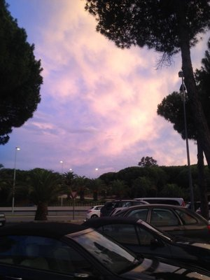 Sky in Elveria, Marbella