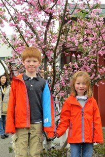 Kids with cherry blossom