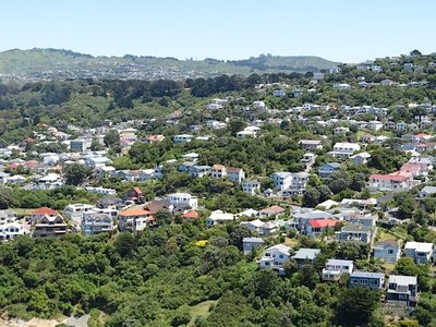 Wellington from the air 1