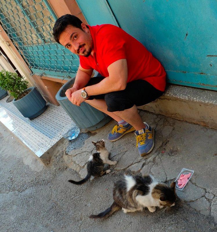 The Block Cat and Kitten