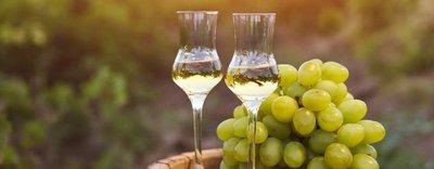 wine_of_Italy.jpg