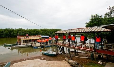 New Asia Holidaysungai-lebah wetland-johor-newasiaholiday6Sungai Lebam Wetland Johor