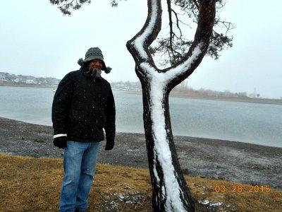 BOS_winthrop_snow_g.jpg