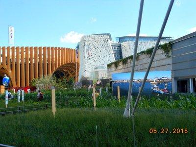 Milan_Expo_gardens.jpg