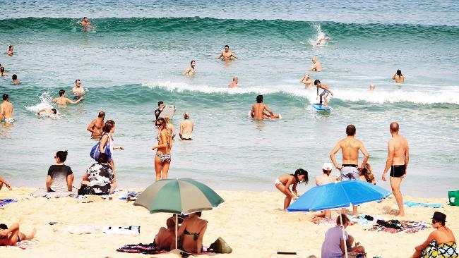 large_963299-beach-scene.jpg