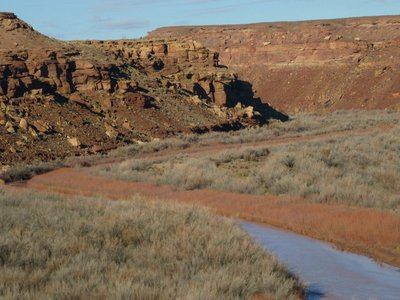 IMG_2810 Canyon of the Little Colorado River