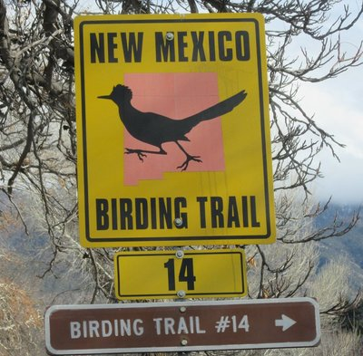 We saw this sign and then saw a roadrunner bird