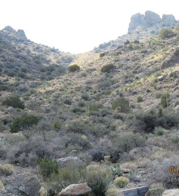 Up Spring Canyon