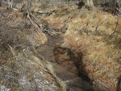 Frijoles Creek closer to visitor centre
