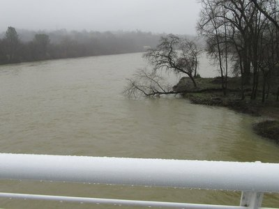 Looking south at the overflowing Sacramento River