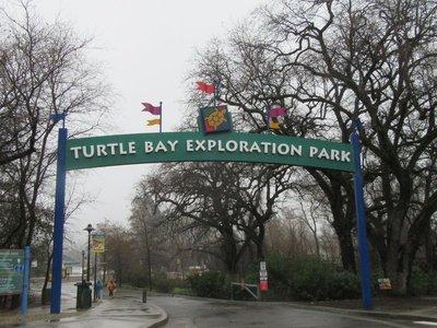 Sundial Bridge is in Turtle Bay Park