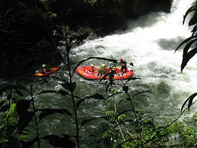 Raft at bottom of Okere Falls