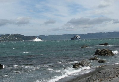 Bluebridge Ferry and Interislander meet in Wellington Harbour