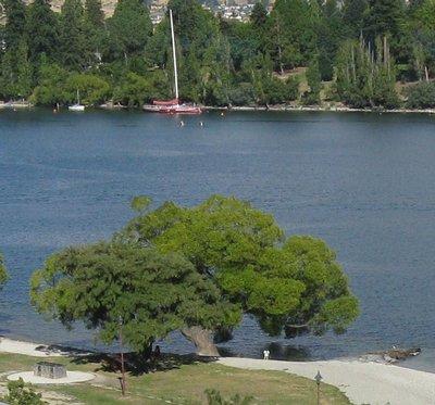 View of tree, child and sailboat on Lake Wakatipu