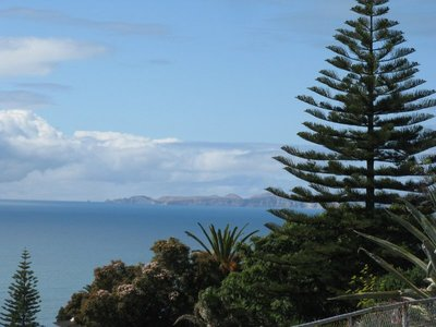 Cape Kidnappers from Bluff Lookout at Napier