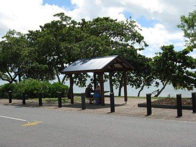 Trinity Beach shade