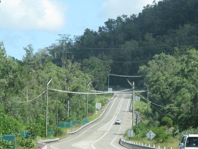 Hammocks built over Hwy A1 so small animals can safely cross