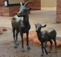 IMG_2707 Sculptured Sheep