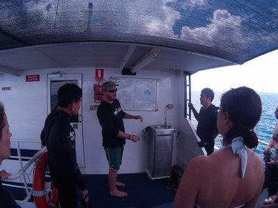 Pre-Diving Instructions