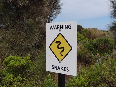 Warning Snakes!