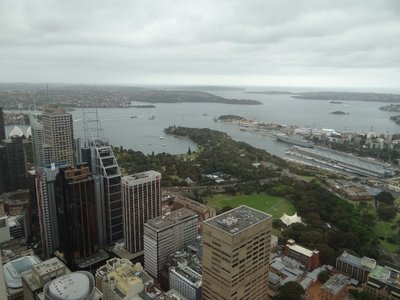 View from Sydney Tower #3