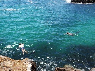Snorkelers around Muttonbird Island
