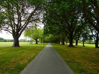 Hagley Park Christchurch