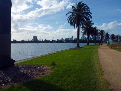 Albert_Park_Palm_Trees.jpg